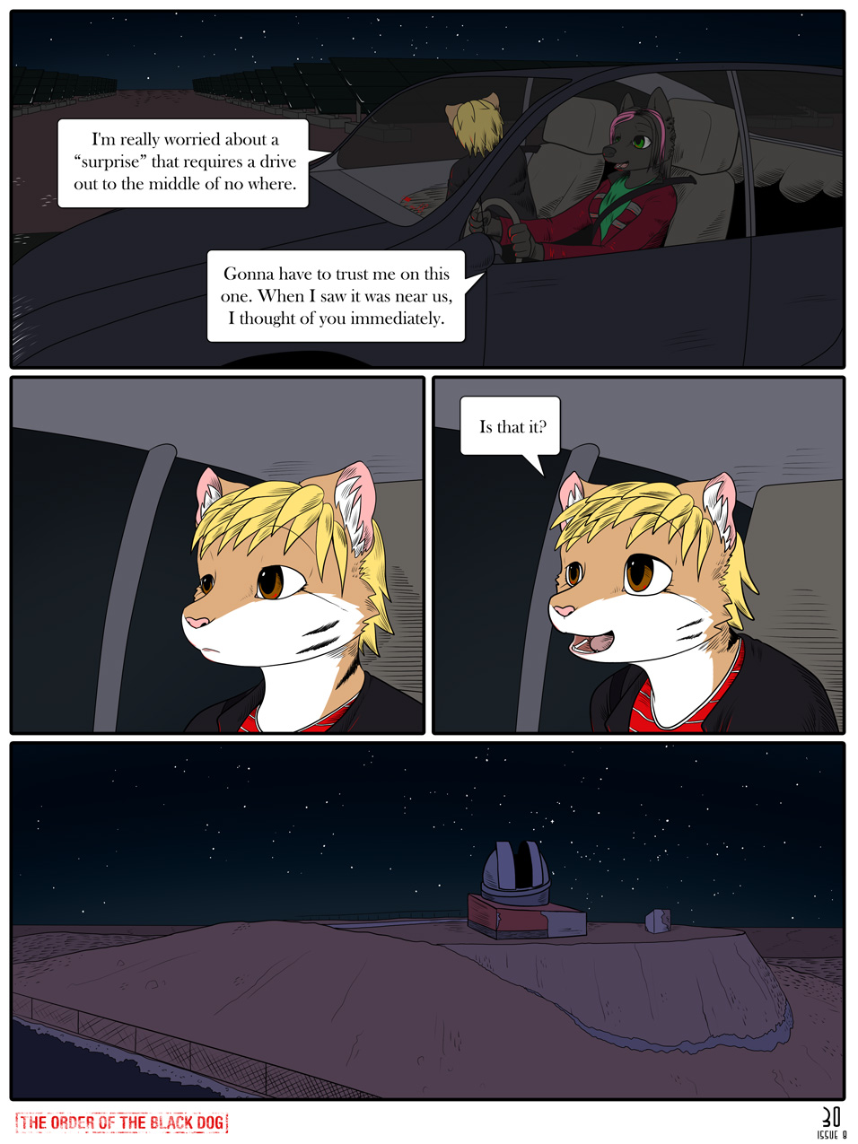 Issue 8, Page 30