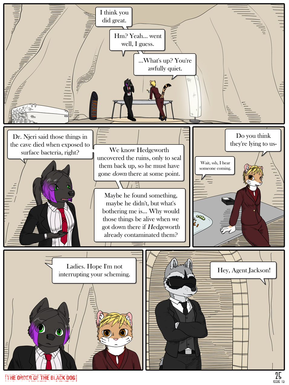 Issue 13, Page 25
