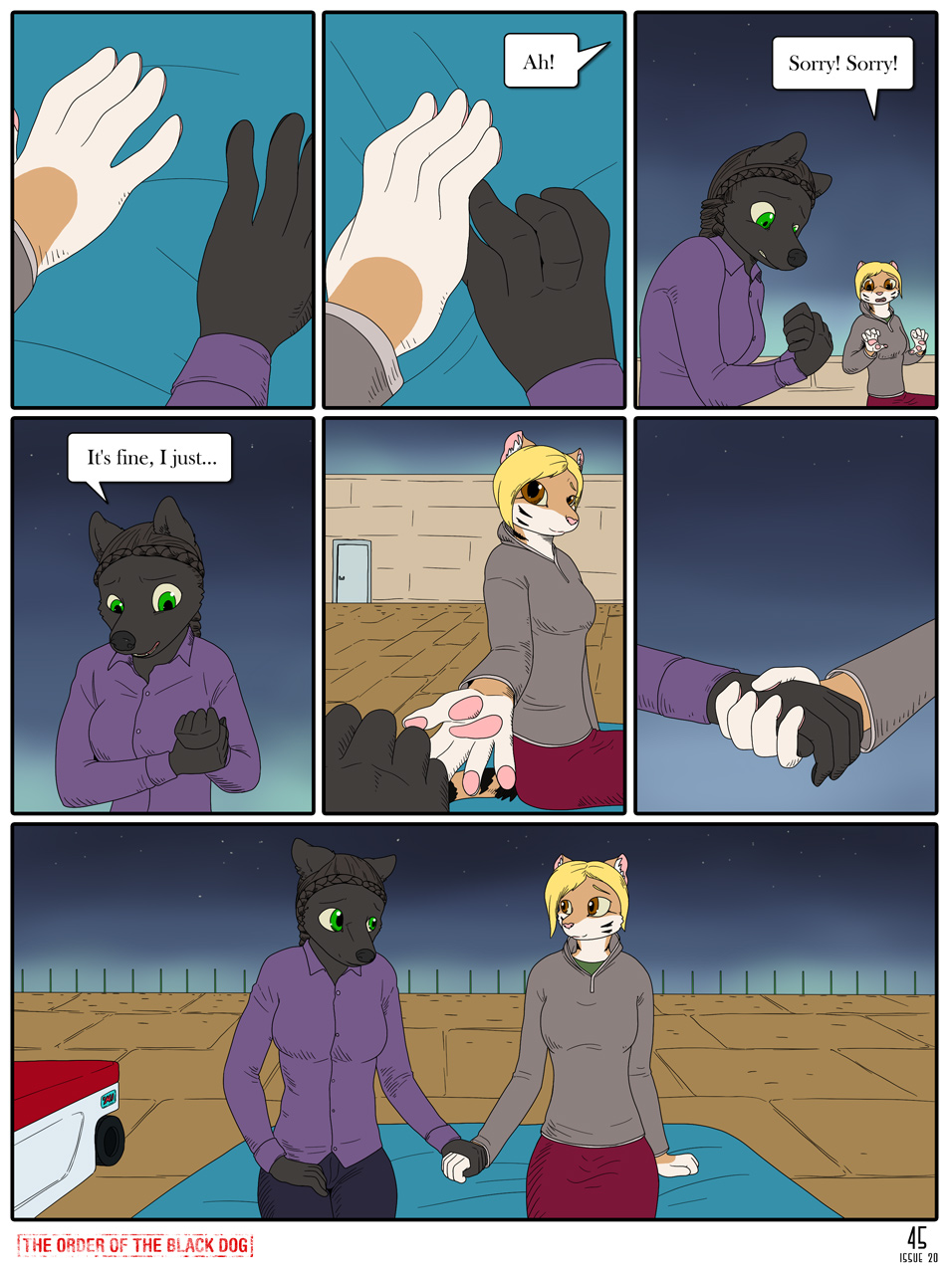 Issue 20, Page 45